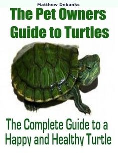 Turtles have long been a favorite pet. However you do need to keep in mind that they are a long term Tortoise As Pets, Tortoise Care, Tortoise Habitat, Turtle Aquarium, Turtle Pond, Turtle Life, Pet Turtle Care, Kinds Of Turtles, Turtle Enclosure