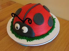 Lady Bug cake from Sara's Sweets Bakery Grand Rapids MI