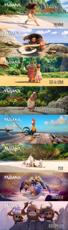 Up until now we knew a little about the main characters and even less about the supporting ones, so jump in and learn all about your soon-to-be-favorite Disney film, Moana! Moana Disney, Disney Pixar, Walt Disney, Disney Animation, Disney And Dreamworks, Disney Love, Disney Magic, Disney Characters, Animation Movies