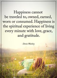Happiness cannot be traveled to, owned, earned, worn or consumed. Happiness is the spiritual experience of living every minute with love, grace, and gratitude.  - Dennis Waitley  #powerofpositivity #positivewords  #positivethinking #inspirationalquote #motivationalquotes #quotes #life #love #hope #faith #respect #happiness #earn #travel #experience #grace #gratitude #spiritual