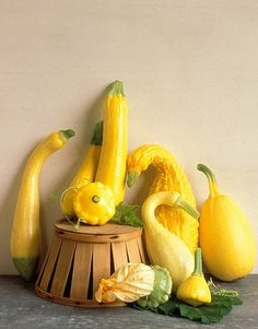 Market Fresh Finds: Whether raw, grilled or in a cake, summer squash a reason to celebrate