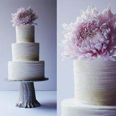 Textured Buttercream #wedding #weddingcake #buttercream #mum #lavender #tree #cake #cakes #instacakers #bridal #vanilla #bridebook #almond #saintsimonsisland #chrysanthemum #chocolate #love #swissmeringuebuttercream #yummy #brides #pink #flower #pretty 📷@studio.essie