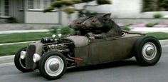 True Rat Rod!