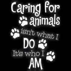Pet care, it's what we do! I Love Dogs, Puppy Love, Veterinarian Quotes, Vet Assistant, Dog Signs, Animal Quotes, Cat Quotes, Animal Shelter, Shelter Dogs