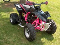 pink QUAD YES PLEASE!! I would absolutely LOVE this!!!