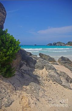 ✯ Horseshoe Beach - Bermuda. Such a wonderful Country to visit. This photo does not show the brilliant turquoise waters and pink sand.