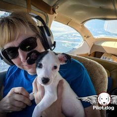 Pam and Rucker in flight on the way to his new forever home. http://pilot.dog #aviation #pilotnpaws #instaaviation #instagramaviation #dog #dogrescue #pilotdog #instagrampilot #instapilot #instadog #foreverhome #rescuedog #dogs #dogsofinstagram #rescuepetsofinstagram