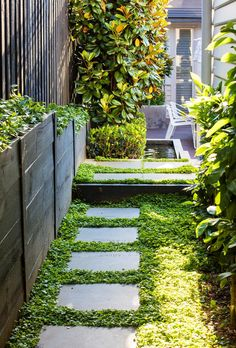 Carolyn and Joby Blackman of Vivid Design have transformed the garden of a Melbourne home, creating a visually softer and low-maintenance retreat. maintenance Australian garden Lush and low-maintenance front yard makeover Side Yard Landscaping, Courtyard Landscaping, Modern Landscaping, Landscaping Ideas, Tropical Landscaping, Garden Pavers, Residential Landscaping, Tropical Gardens, Landscaping Software