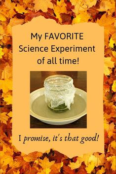 Fall Science Experiment This science experiment for kids is sure to fascinate learners of all ages! A simple explanation of why leaves change color in the fall. It's a great fall activity for preschool, kindergarten, or even older kids, too! Kindergarten Science, Science Classroom, Teaching Science, Science Education, Physical Science, Learning Activities, Kids Learning, Science Projects For Kids, Autumn Activities For Kids