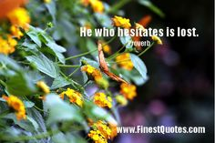 Quote about Hesitation || He who hesitates is lost.  Proverb