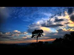 Relax Music - Relajación Música Japonesa - Relax Music Giapponese - Musica Relax Oriental - YouTube
