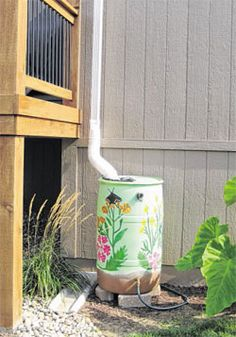 Rain Barrels - put a mesh, clean regularly & keep out mosquitos & other bugs or vermin. i would only use this for watering plants