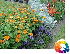 Explore Cornell - Home Gardening - Using Color in Flower Gardens