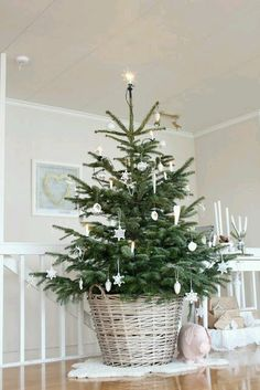 Minimalist décor is definitely the it-girl of decoration styles. Check out this list of trendy Minimalist Christmas Tree Décor Ideas for inspo. Minimalist Christmas Tree, Small Christmas Trees, Noel Christmas, Rustic Christmas, Winter Christmas, Christmas Crafts, Christmas Tree In Basket, Simple Christmas, Real Xmas Trees
