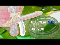 Why Aloe Vera Good for Men Using Only 2 Ingredients Benefits of Aloe Vera Gel for Male Enhancement - YouTube