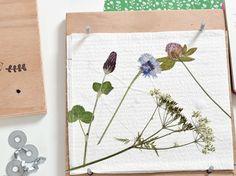 DIY-Anleitung: Blumenpresse fürs Herbarium bauen / diy tutorial for a flower compactor via DaWanda.com