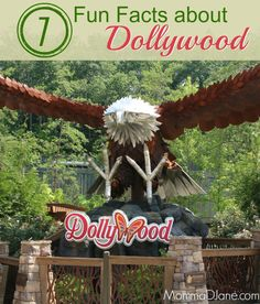 7 Fun Facts About Dollywood Theme Park in Tennessee   http://mommadjane.com/7-fun-facts-dollywood?utm_content=buffer31e84&utm_medium=social&utm_source=pinterest.com&utm_campaign=buffer