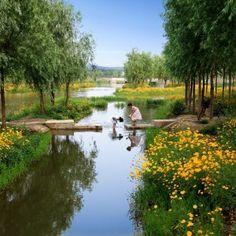 Sanlihe Ecological Corridor by Turenscape « Landscape Architecture Works Contemporary Landscape, Urban Landscape, Landscape Design, Wetland Park, Ecology Design, Natural Ecosystem, Water Management, Urban Park, Rain Garden