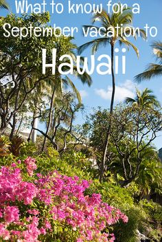 What to know for a September vacation to Hawaii   Go Visit Hawaii