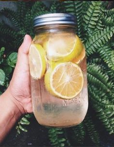 Grapefruit, Apple Cider Vinegar, Honey Juice- 9 Super Fat Cutter Drink Recipes for Fat Burning and Belly Fat removal *detox drink 💕💕💕💕 Healthy Drinks, Healthy Recipes, Drink Recipes, Healthy Food, Nutrition Drinks, Healthy Detox, Happy Healthy, Stay Healthy, Fat Cutter Drink