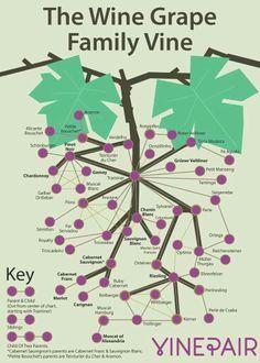 The wine tree