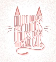 "Collect Cats Inspirational Quote Typography Lettering - ""Collect Moments Not Things Unless Those Things Are Cats"" - On the Mark Designs"