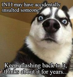 INTJ accidentally insults someone