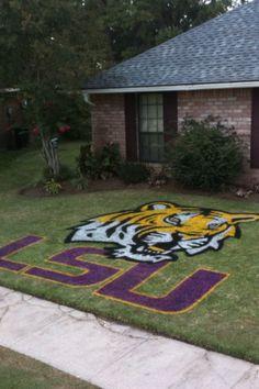 Eye of the Tiger stencils @ TigerDroppings.com