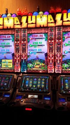 Casino potawatomi poker tracking software for mac mail