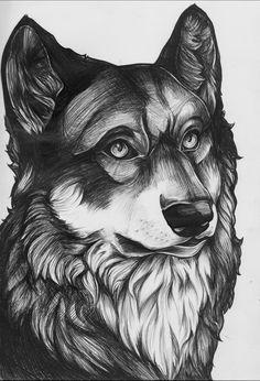 Wolf Biro Sketch by Bluelioness on DeviantArt
