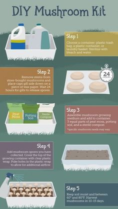 Hydroponic Gardening Grow your own Mushrooms easily with this DIY Mushroom kit! - Learn how to grow mushrooms at home indoors and also in a Mushroom Kit and Coffee Grounds. Our post has lots of great information you won't want to miss. Grow Your Own Mushrooms, Growing Mushrooms At Home, Garden Mushrooms, Edible Mushrooms, Growing Shiitake Mushrooms, Growing Vegetables At Home, Hydroponic Gardening, Organic Gardening, Container Gardening