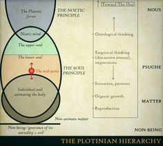 The Plotinian Hierarchy - a metaphysical diagram, Plotinus on degrees of consciousness and being.