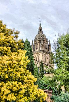 Torre de la Catedral de Salamanca #Salamanca