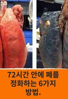 72시간 안에 폐를 정화하는 6가지 방법. Health Diet, Health Care, Health Fitness, Health Trends, Healthy Living Tips, Health Benefits, Helpful Hints, Healthy Lifestyle, Natural