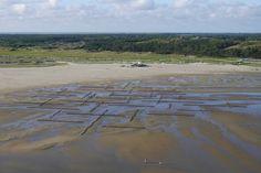 Landschapskunst en experiment tegelijk Bruno Doedens (SLeM) en architect Machiel Spaan (M3H) hebben een installatie van wilgentenen langs de kust van Terschelling gerealiseerd. Wadland is, naast landschapskunst, ook een experiment met kweldervorming.