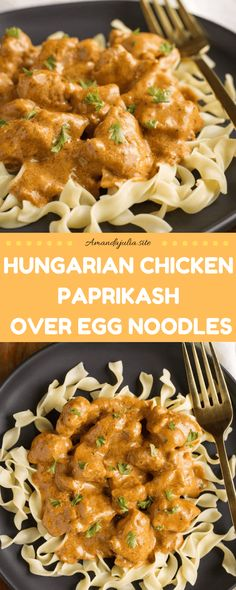 Hungarian Chicken Paprikash Over Egg Noodles Recipe - Amandajulia.site<br> Quick and easy hungarian chicken paprikash recipe. I'll spare you the step-by-step directions for the recipe card below, but here's the. Egg Noodle Dishes, Egg Noodle Recipes, Recipes Using Egg Noodles, Egg Dinner Recipes, Hungarian Chicken Paprikash, Hungarian Paprika Chicken, Chicken And Egg Noodles, Clean Eating, Cooking Recipes