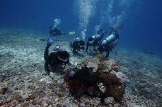 L'Oreal Men Expert Black Trail: One of Diving Spot at Komodo National Park. Amazing!