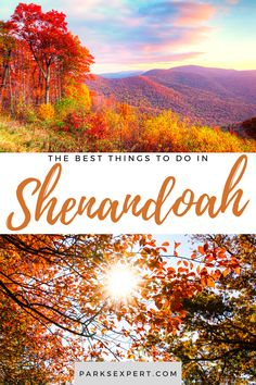Shenandoah has plenty to offer, including camping, fishing, hiking, and historical sites. Here is our list of the top things to do in Shenandoah National Park. | Things to Do in Shenandoah National Park | Shenandoah things to do Shenandoah National Park, Usa Travel, Travel Tips, Picnic Area, Outdoor Woman, Historical Sites, Rafting, Travel Inspiration