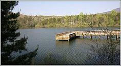 Table rock SC-Fishing Pier on Lake Oolenoy