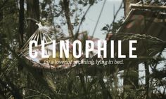 Clinophile: a lover of reclining, lying in bed