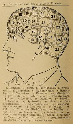An illustration from Vaught's Practical Character Reader, a book on phrenology by L. A. Vaught published in 1902.     See many more images from the book here: http://publicdomainreview.org/2013/03/19/phrenology-diagrams-from-vaughts-practical-character-reader-1902/