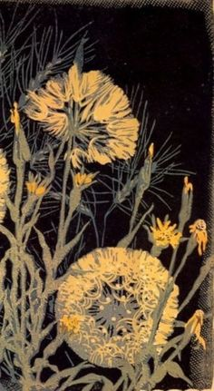 Gustave Baumann Tares, woodblock print from paul hooker Illustration Photo, Botanical Illustration, Linocut Prints, Art Prints, Block Prints, Toile Design, Wood Engraving, Mellow Yellow, Woodblock Print