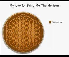 Bring Me the Horizon Put this on a short? Oh my. I can't even.. Like.. <3
