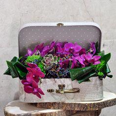 Sevgiliye Özel Orkide Aranjman  Kullanılan Malzemeler: 1 adet Succulent ve Fuşya Orkide