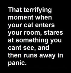 That terrifying moment...accurate