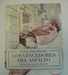 """Madrid, 25 may (EFEverde).- El asfalto de Madrid parece, a priori, un lugar hostil para la fauna salvaje, pero sorprendentemente acoge a """"infiltrados, guerrilleros y turistas ocasionales"""", las miles de aves que logran colonizar y hasta ganar batallas en el corazón de cemento."""