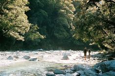Another photo from New Zealand, using my Olympus with Portra 400 : analog Film Photography, Landscape Photography, Portra 400, Hogwarts, Film Inspiration, Film Aesthetic, Summer Feeling, Famous Photographers, Adventure Is Out There