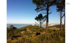 Our property in Leiria, Portugal has one of the nicest views out of any of our properties. Book your stay with Tripezi in Portugal @ http://www.tripezi.com/property/details/TkRjallXTjE=/entire-home-appartment/house-in-a-beautiful-place-of-nature