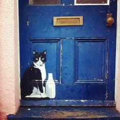 Blue - door and cat - street art Old Doors, Windows And Doors, I Love Cats, Crazy Cats, Art And Illustration, Illustrations, Street Art, Best Front Doors, Painted Doors