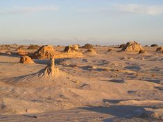 The remains of the first known Australian, Mungo Man, begin their journey home today. Scientists hope they'll still get a chance to study the ancient remains, working with the Traditional Owners.